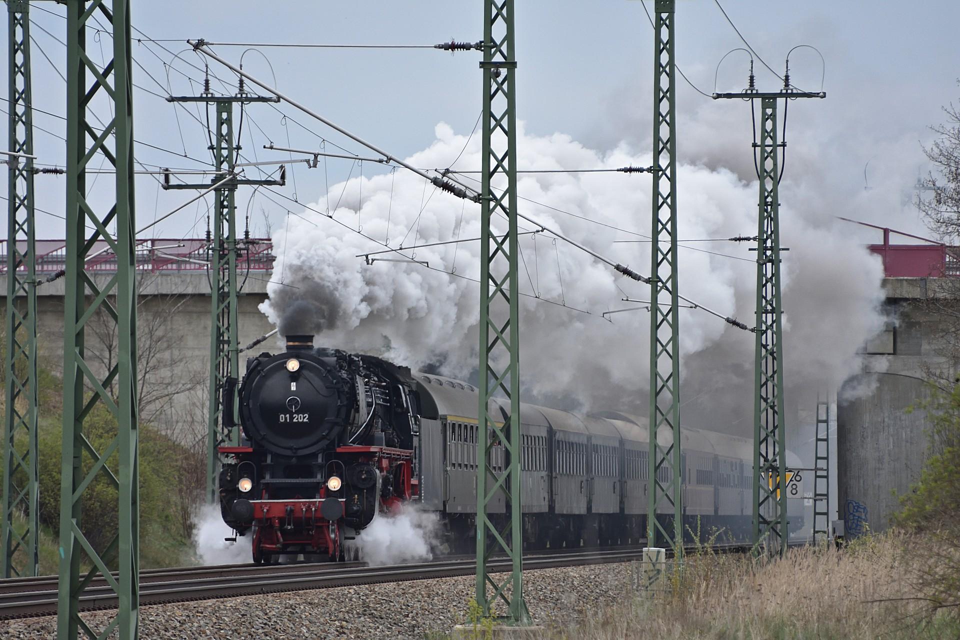 DSC_1173