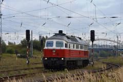 DSC_1206
