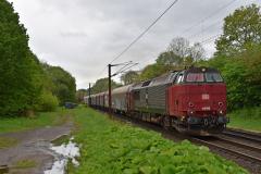 DSC_3675