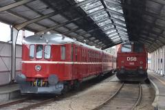 DSC_8146