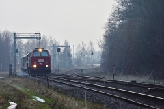 DSC_4159