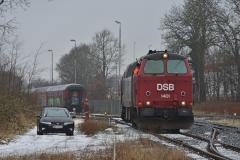 DSC_4492