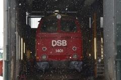 DSC_5635