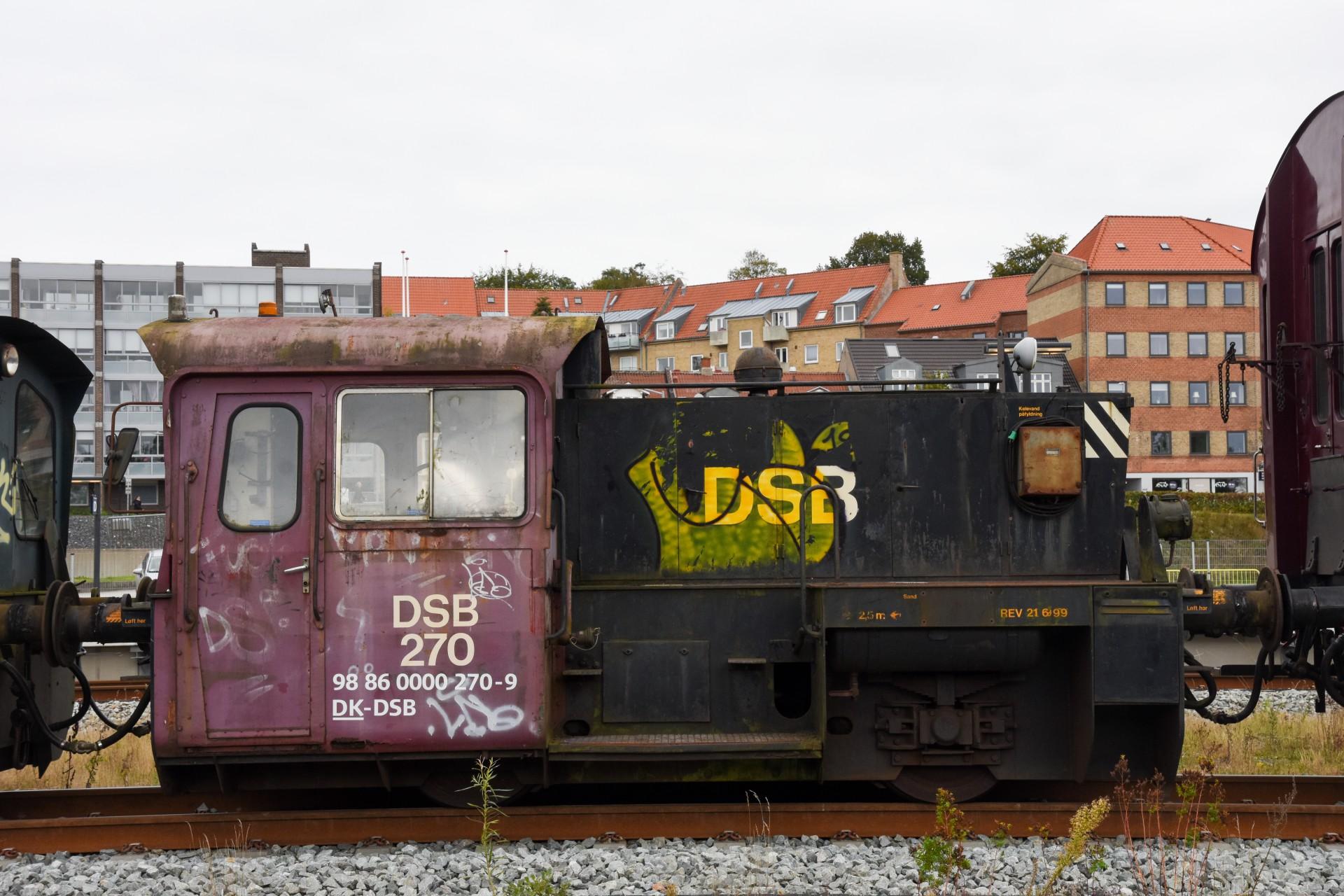 DSC_3677