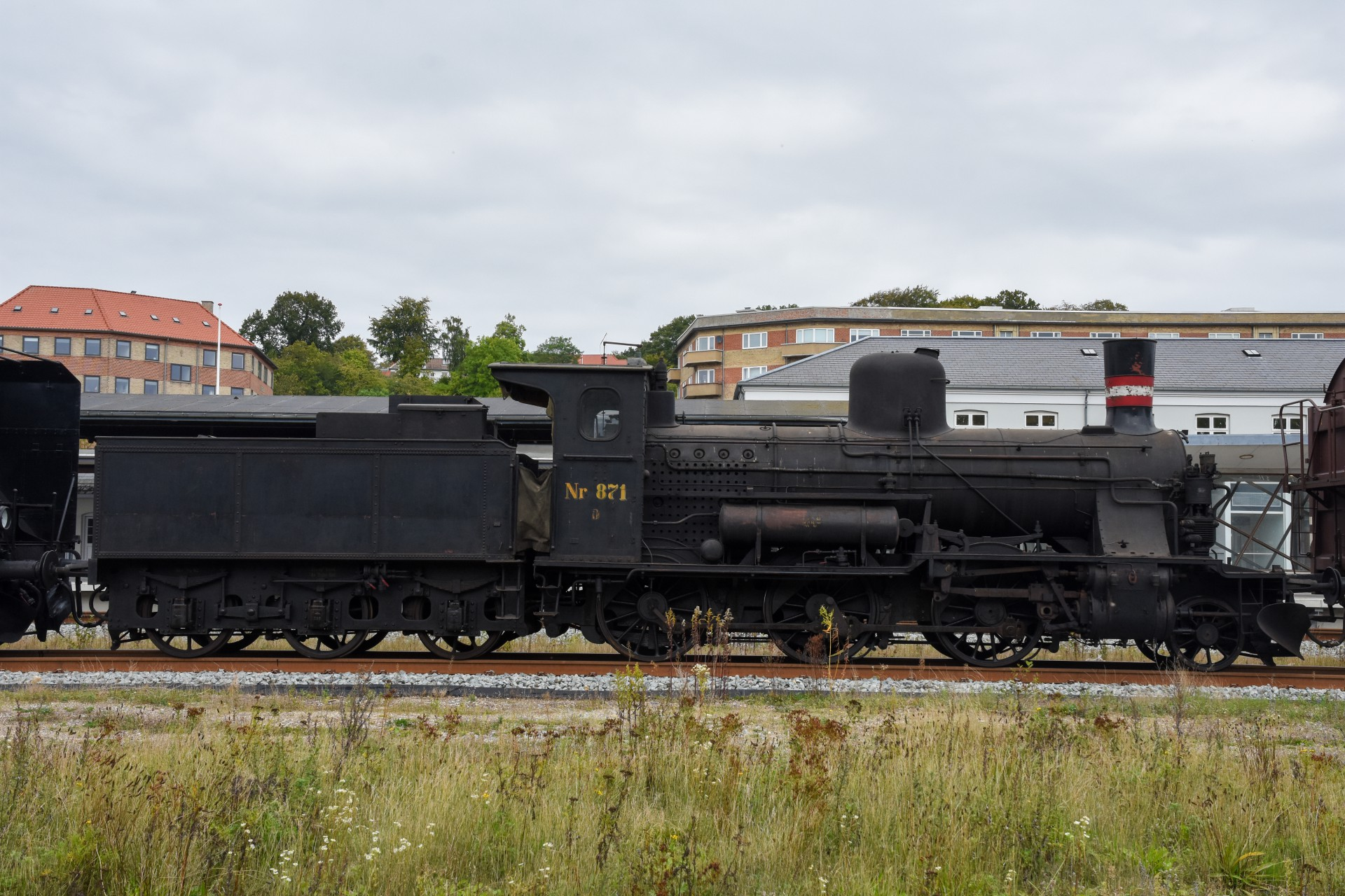 DSC_3696