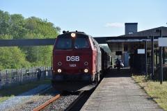 DSC_2931