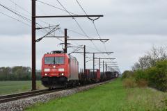 DSC_1225