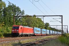 DSC_8829