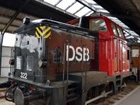 DSC_0317