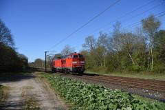 DSC_8553