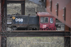 DSC_3030