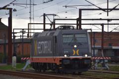 DSC_5321