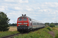 DSC_8699