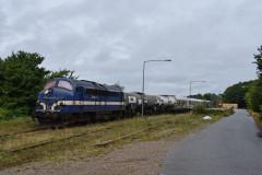 DSC_7703