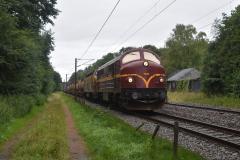 DSC_9596
