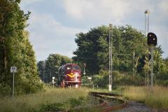 DSC_3636