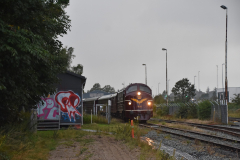DSC_1941