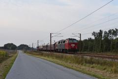 DSC_9306