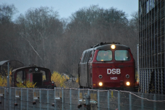 DSC_2362