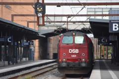 DSC_7039