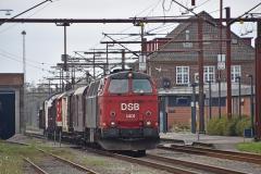 DSC_9346