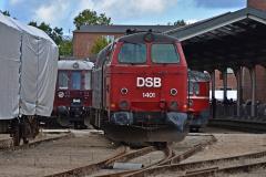 DSC_2705