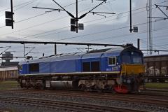 DSC_1176