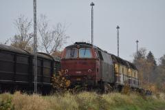 DSC_5548