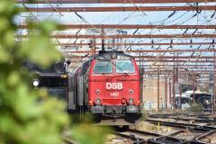 DSC_9992